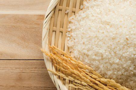 近江米<br>「湖辺ならではの美味しいお米」